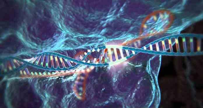 genome-editing