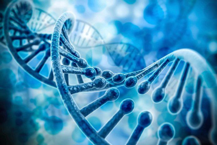 genetic/phenotype connections