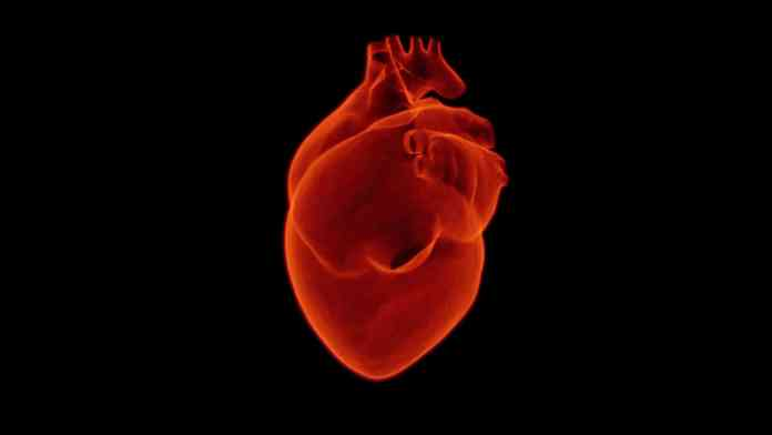 Blood flow from heart effect on memory