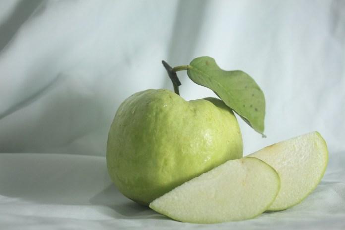 spinonews guava benefits