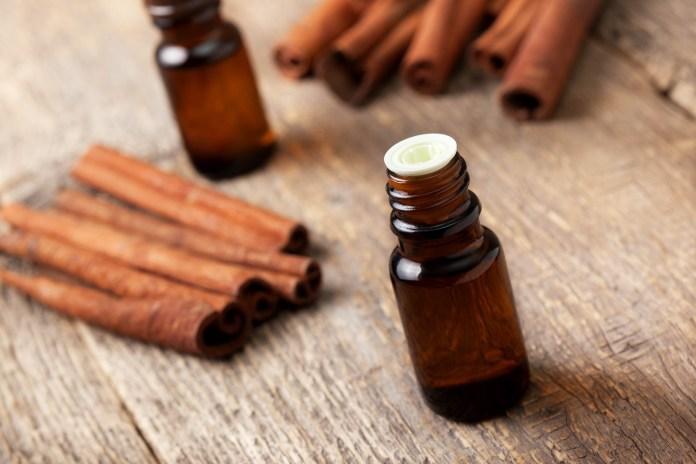 spinonews Cinnamon oil
