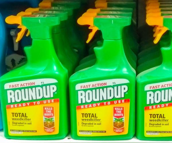 spinonews Monsanto