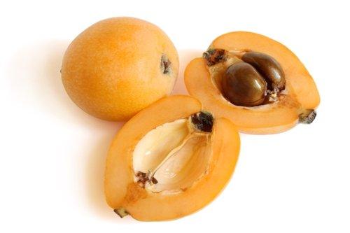 areflect Loquat fruit