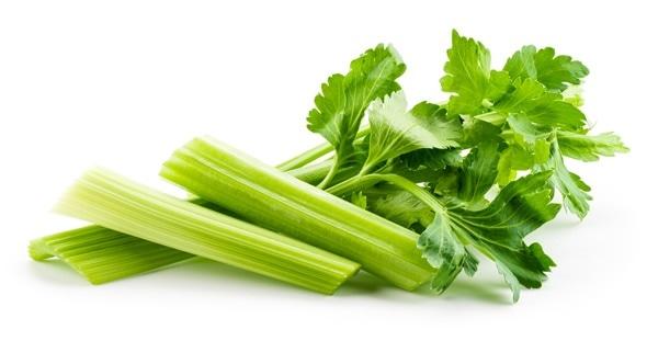 areflect celery