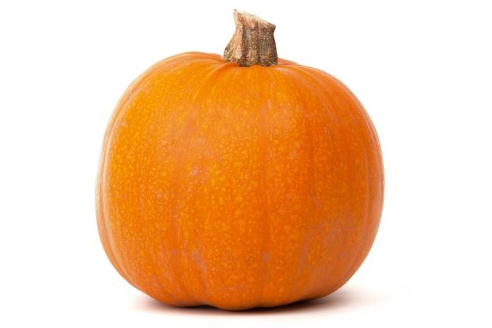 areflect Pumpkin