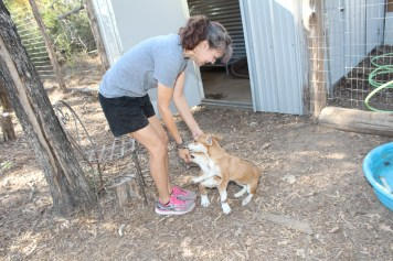 Adette Quitana (owner of Chuckling Hound) is pictured with the puppies she rescued