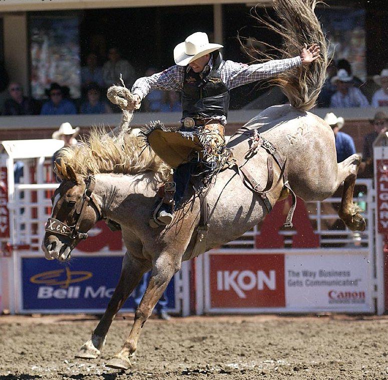 Rodeio De Calgary Parte 1 Arena Bruta Rodeio Com Mais