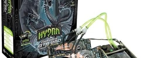 ECS Hydra GTS 250