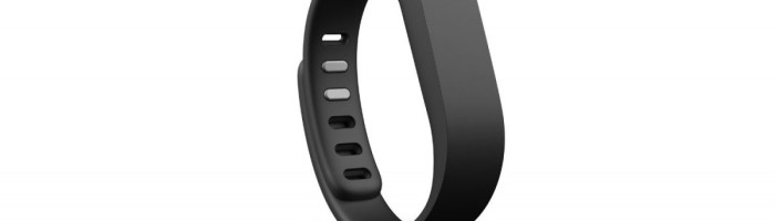 Review Fitbit Flex