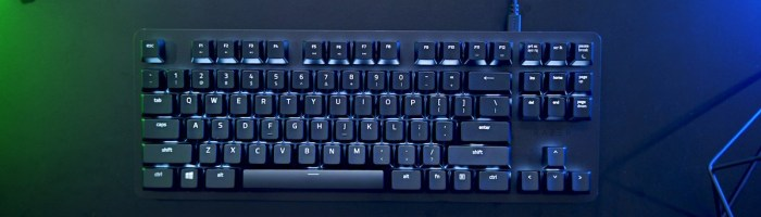 Razer lanseaza tastatura Blackwidow Lite - mai putin pentru gaming