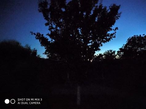 Low Light Outside Nightshot
