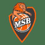logo msb png