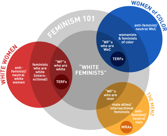 ninjacates_guide_to_white_feminism_FINAL_A-01.png