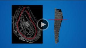 Vidéo : dérouler le manuscrit d'Ein-Gedi sans même le toucher