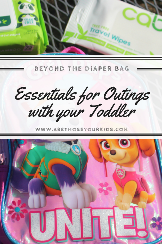 Babies require everything but the kitchen sink in the diaper bag. As your baby transitions into a toddler, list of diaper bag essentials changes.