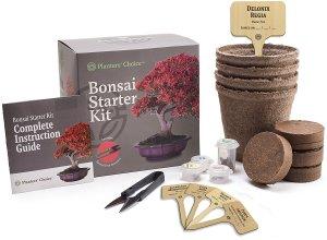 away_bonsai