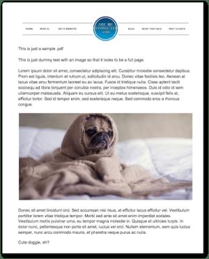 screen capture of my pdf