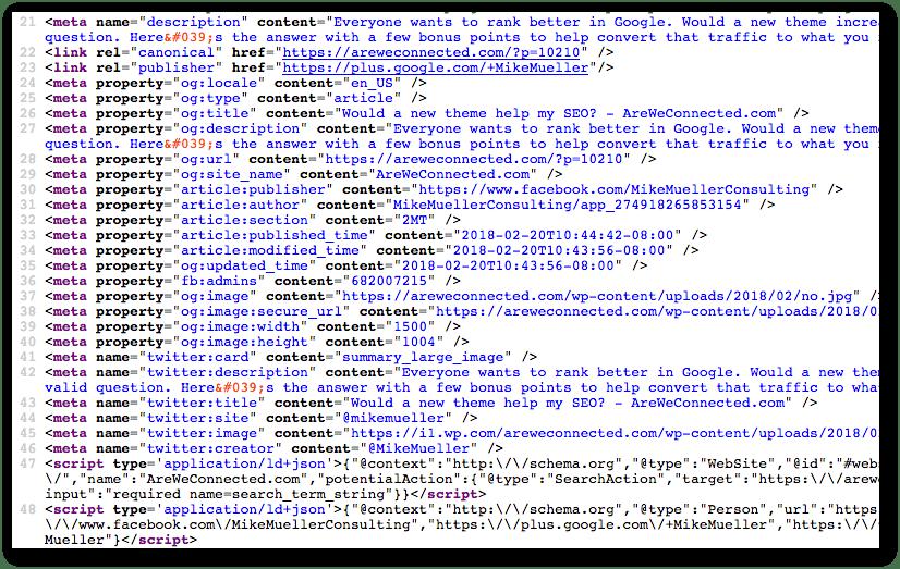 schema and metadata