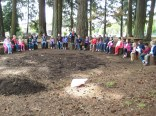 The Kindergarten class enjoyed the new stump seating