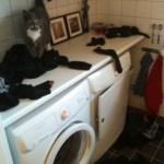 Tvättmaraton