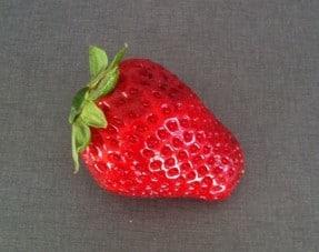 jordgubbe jordgubbar
