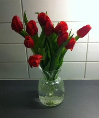 En bukett röda tulpaner. Helt slut efter en dag på jobbet, puh!
