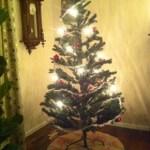 En udda julklapp…