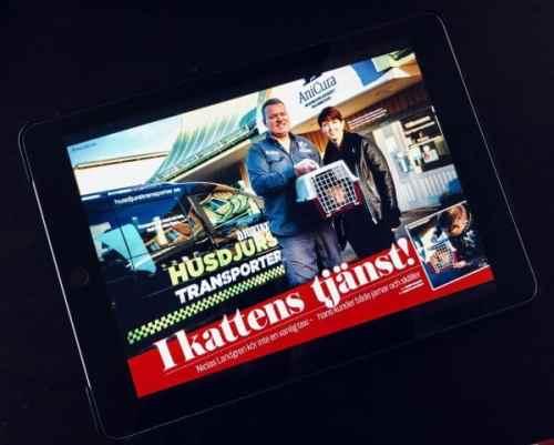 Klara Schmidtz och Niclas Landgren i reportage om Husdjurstransporter i Aftonbladet Katt