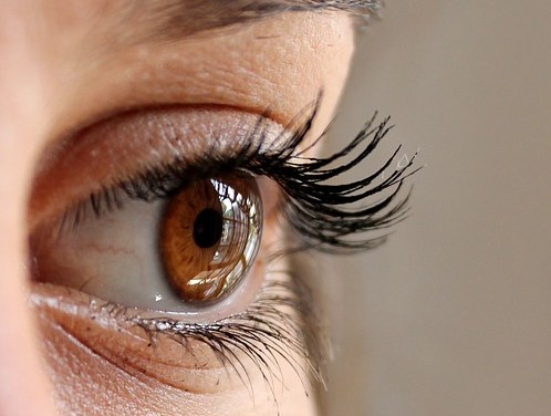 Argan Oil For Eyebrows And Eyelashes