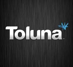 Toluna Sondage en ligne
