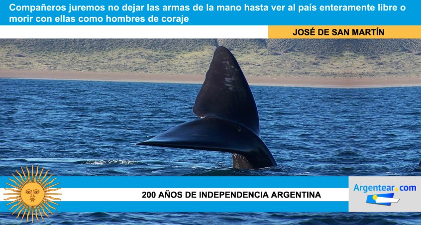 Frases independencia argentina