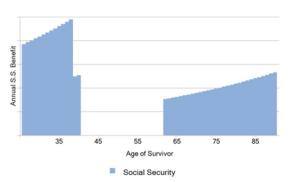Social Security Blackout Chart