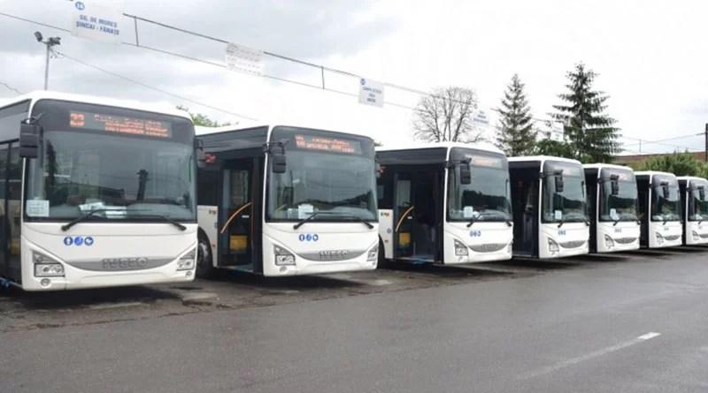 Cum vor circula autobuzele din Pitești în vacanța de Rusalii