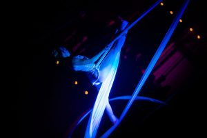 Aerial Silk Act - Corporate Entertainment - Argolla Show