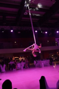 aerial silk acrobat - Argolla show - corporate entertainment