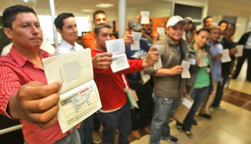 En Canadá, buscan a trabajadores mexicanos; el salario al menos es de $70 mil mensuales.