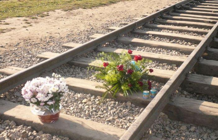 Tracks into auschwitz