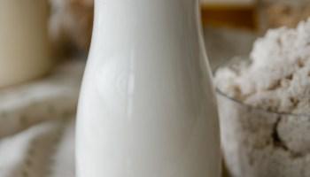 leite de castanha do para vegano