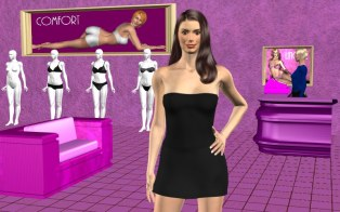 Version 7 view inside lingerie store