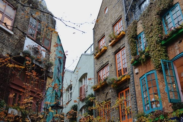 best things to do in london this weekend- neals yard