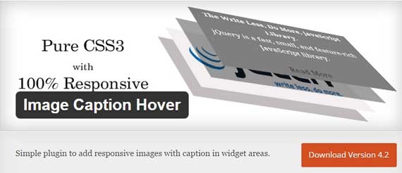image-caption-hover