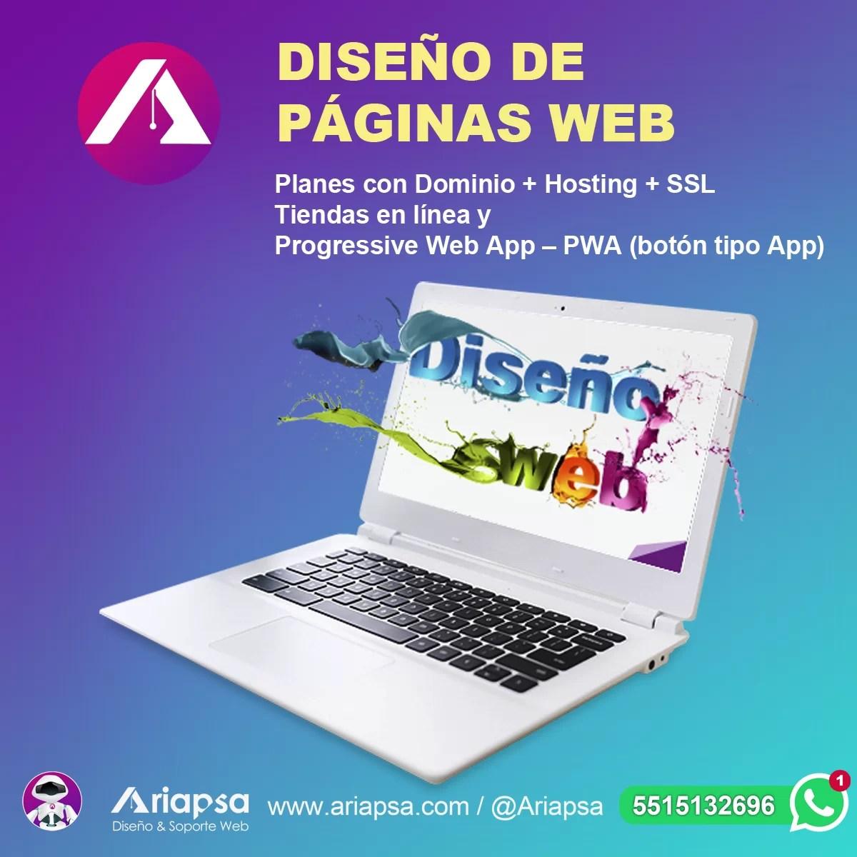 Diseño web México Ariapsa 2A