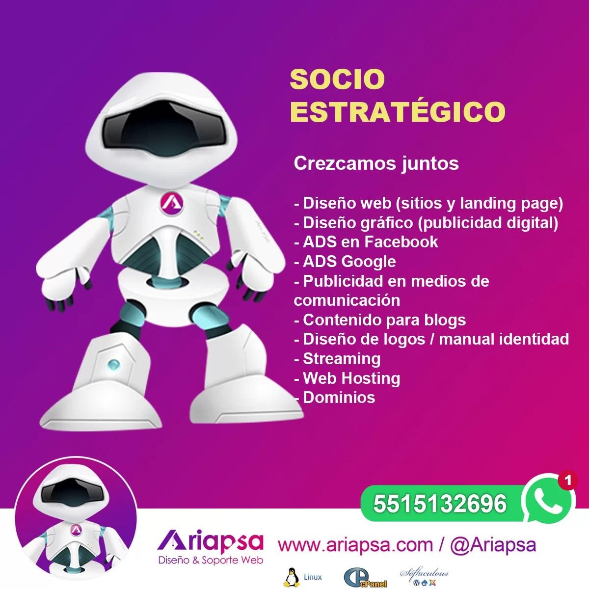 Diseño web socio estrategico Ariapsa México