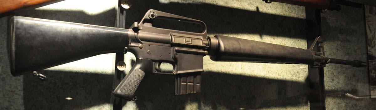 Reflections on American Gun Laws