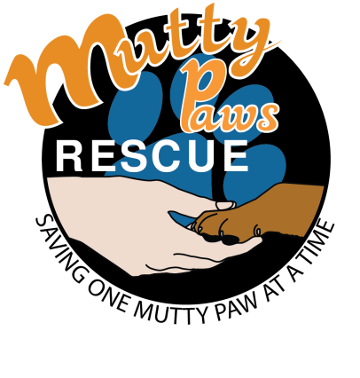 The final version of my Mutty Paws Rescue logo redesign. Lots of work to get this far (about 23 different files and tons of logo iterations!) Decided to go with this logo because the color black is the most predominate color on their website. Also, the outlined text was much better looking than having it against a lighter background color. The paw print was originally going to be a brown color, but it clashed too much with the dog's paw. It was then decided to change the paw print blue since it is a complementary color to the orange text.