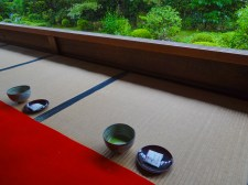 The view out from the tea area in the main hall.
