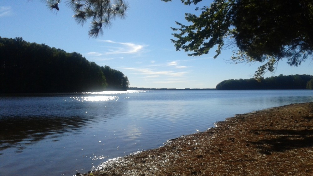 Lake Davidson, last swim day October 10, 2016