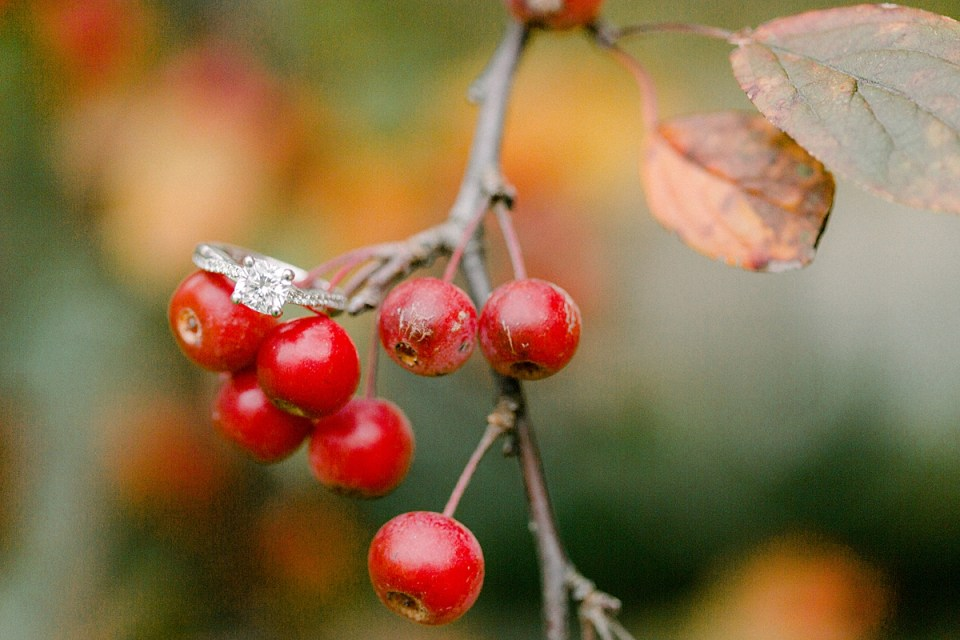 Arielle Peters Photography | Engagement ring on tree branch during fall engagement photos at Purdue University.