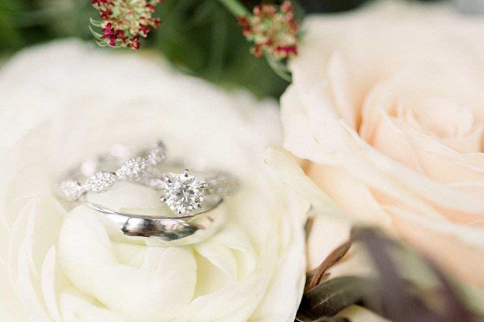 Arielle Peters Photography | Wedding rings on roses.