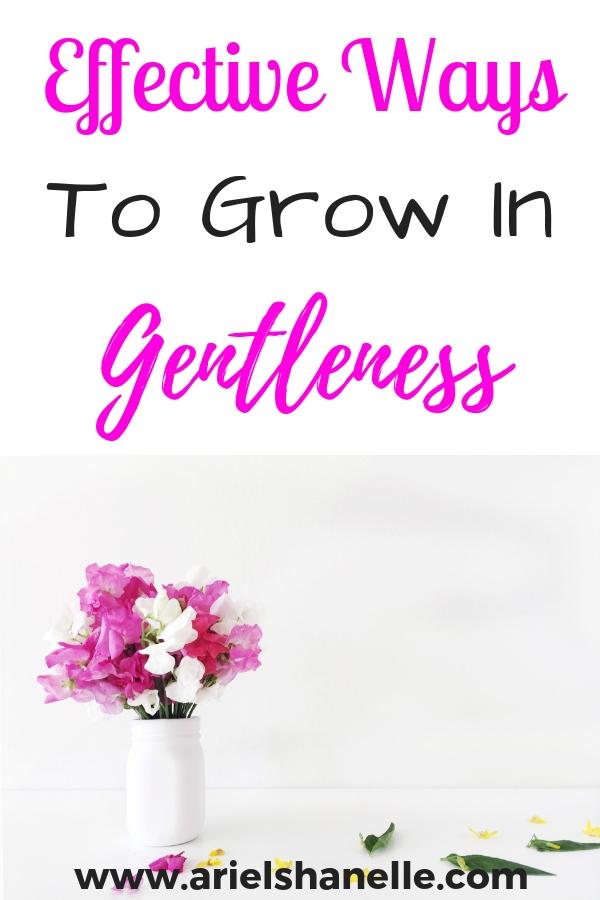 Grow in the spiritual fruit of gentleness